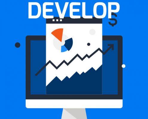 5D Vorgehen zur Digitalisierung: Schritt 3 - Develop